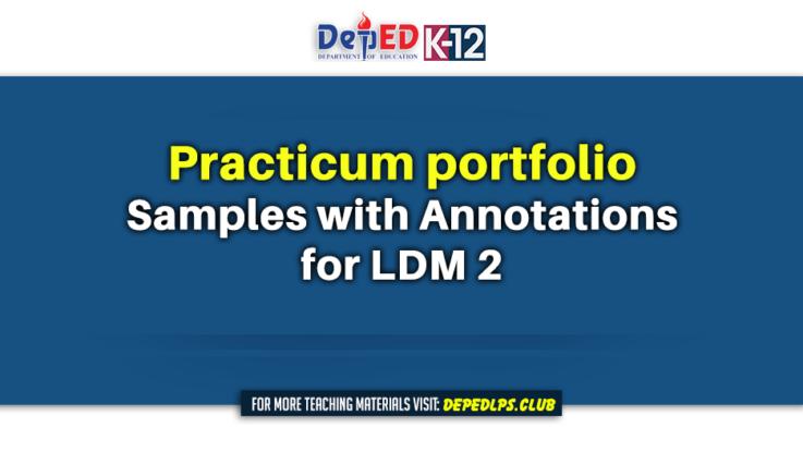 Practicum portfolio Samples with annotations for LDM 2
